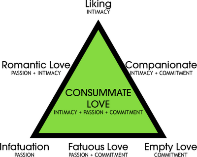 Companionate love psychology